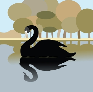 black_swan_on_a_lake_romantic_background_illustration