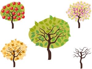 seasonal_trees